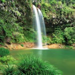 One of the waterfall in Lambir Hills National Park.